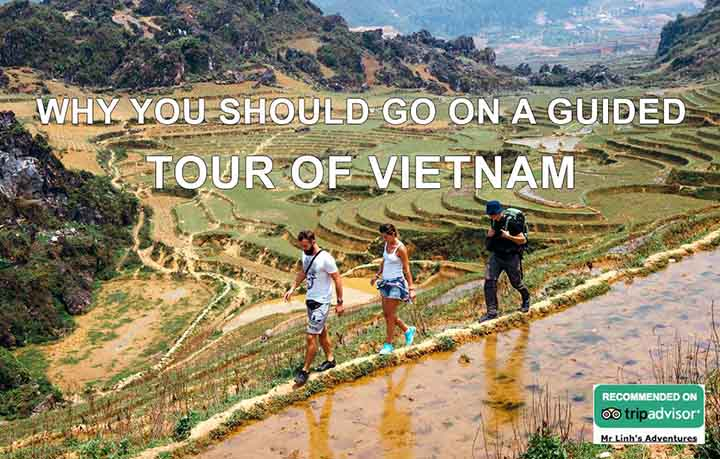 Why you should go on a guided tour of Vietnam
