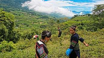 Sapa Adventure 3 days 2 nights